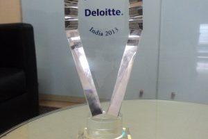 Deloitte Fast 50 India 2013